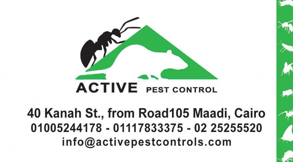 active Card-5x9cm